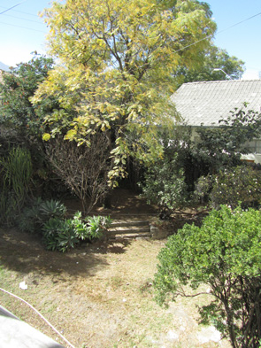 New House Image 52