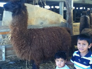 Cristian and Zaquiel